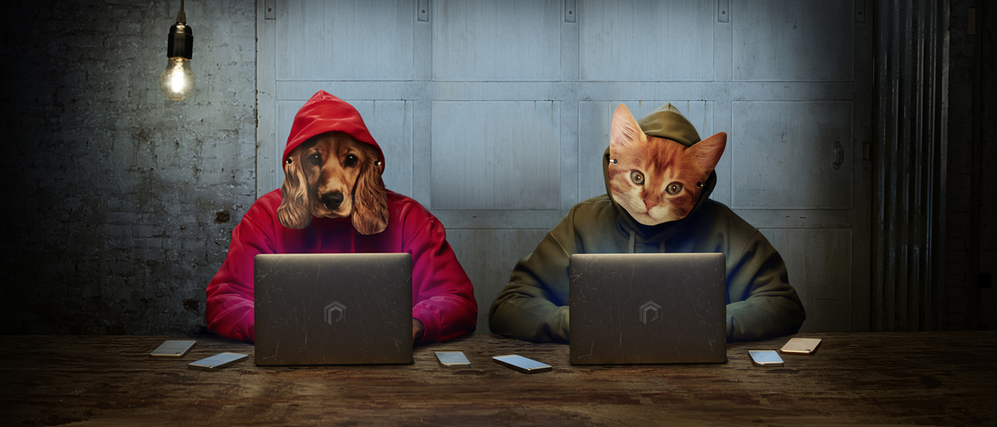 Two people in hoodies browse the internet, wearing a dog mask and a cat mask, in a metaphor that suggests deceptive pet sellers.