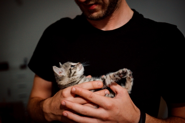 A man affectionately holding a kitten
